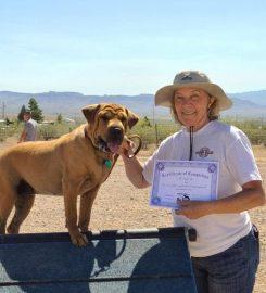 K9 Paws Behavior Dog Training