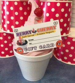 Berry Cherry Frozen Yogurt